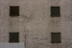 Foursquare (sonofsteppe) Tags: life street old city winter urban detail building tree art horizontal wall architecture composition square concrete four grid photography 50mm grey daylight mural scenery iron hungary industrial mood exterior outdoor bare budapest gray overcast scene dirty pale architectural explore simplicity area environment series utca minimalism deciduous visual simple exploration minimalist ventilation frontview fragment milieu wallscape sonofsteppe pusztafia ferencváros urbanlifeoftrees