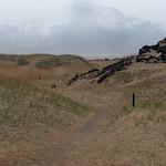 Winding Trail thumbnail