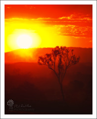 Dance Into the Fire (Phil Rettke) Tags: sunset red orange yellow fire se dusk deep burn qld ipswich firestorm amberley yamanto