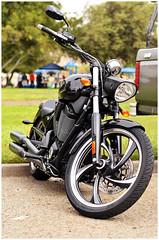 DSC_0864 (1N23456) Tags: hello honda chopper ninja hellokitty kitty harley moto motorcycle yamaha hd sportbikes r1 suzuki custom davidson cruiser matte kawasaki ness repsol buell gsxr cbr superbike zx supersport cbr1000rr r6 arlen yzfr1 636 yzfr6 kawi matteblack gsx600r crossplane gsx1000r literbike