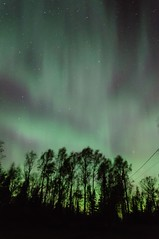 Light Show (the real Kam75) Tags: autumn trees sun fall colors night stars windy images aurora flare northernlights cme