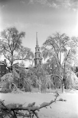 020469 17 (ndpa / s. lundeen, archivist) Tags: park trees winter blackandwhite bw snow storm building 1969 film church monochrome boston 35mm ma blackwhite massachusetts nick snowstorm steeple spire 1960s february common snowfall blizzard bostoncommon snowcovered winterstorm parkstreetchurch dewolf parkstreet heavysnow bigsnow coveredinsnow recordsnowfall recordsnow nickdewolf photographbynickdewolf