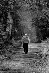 Spaziergang (grafenhans) Tags: old white black alt sony stock tamron wald weiss schwarz spaziergang grafenwald 2870200 slt55