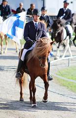 Isi (kimmaysd) Tags: summer horses berlin sport sommer pass weltmeisterschaft riding pony pferd equestrian turnier fuchs karlshorst trab schimmel brauner icelandichorse galopp schecke isländer tölt schritt falbe islandpferd rappe rennpass