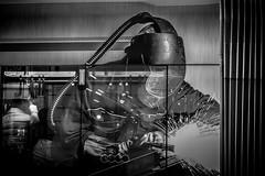 Workforce / Tram (ch.weidinger) Tags: street city blackandwhite bw work linz austria sterreich transport tram stadt publictransport streetcar arbeit tramway strassenbahn trolleycar arbeiter workforce streetrailway tramsystem streetfotographie trolleysystem stasenfotografie cablecartra electrictramtra