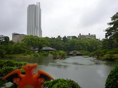Charizard in Hiroshima, Hiroshima 15 (Shukkei-en Garden) (Kasadera) Tags: toys hiroshima figure pokemon pokmon  charizard   glurak  shukkeiengarden pokemonkids   dracaufeu