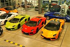 Lamborghini Madness.