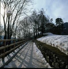Walking in the shadows (Todron) Tags: road snow 120 6x6 film mediumformat square 50mm strada fuji walk slide hasselblad velvia neve trento epson v600 filmcamera fujichrome e6 trentino diapositiva 220 distagon 500cm velvia50 passeggiata 50asa hassy malè 50mmf4 autaut valledelsole trentinoaltoadigesudtirol