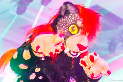 _MG_0706 (Tiger_Icecold) Tags: confuzzled cfz2016 cf2016 furcon furry convention fursuit birmingham party deaddog ddp deaddogparty