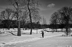 The Lone Skier (CVerwaal) Tags: blackandwhite centralpark northmeadow snow winter newyork ny usa skiing ricohgr