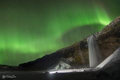 aurora borealis @ Seljalandsfoss, Iceland (FollowingNature (Yao Liu)) Tags: seljalandsfoss iceland waterfalls followingnature northernlights nightsky auroraborealis icelandphotos icelandphototrip icelandwinter icelandnorthernlights icelandwinterphotos icelandphotography snow icelandphotoswinter icelandphotographylocations