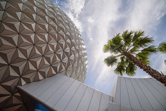 Looking up at EPCOT (wdwben) Tags: waltdisneyworld waltdisney waltdisneyworldresort waltdisneyworldparksandresorts waltdisneyworldparks disney disneyworld disneyparks disneyparksandresorts epcot epcotcenter epcotinternationalflowerandgardenfestival futureworld spaceshipearth sse bracketed nikon nikond610 irixlens irix15mm
