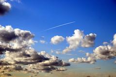 MDD_1267 (Dmitry Mahahurov) Tags: тосно махахуров tosno mahahurov nikon heaven russia sky sunlight