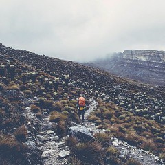 Trekking the Colombian National Park El Cocuy @visitsouthamerica.co #visitsouthamerica (joemania) Tags: roadtrip beautiful epic awesome nature photography sony sonyalpha a7rii minimalist travel traveller fauna ontheroad travelphotography photooftheday unique iceland aerial drone earthpix discoverearth beautifulplaces destinations wildernessculture earthgallery ourlonelyplanet wanderlust instatravel travelgram travelling trip traveltheworld getaway travelpics wanderer travelphoto arountheworld