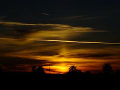 Golden (Scott Douglas Worldwide) Tags: sky s sunrays smiling sun sunset sexy az arizona awesome america amature american aa yumaaz perfect p peaceful paradise palmtree palm palms palmtress pretty