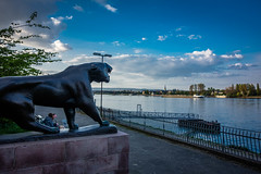 Blick auf den Rhein (mirko.borgmann) Tags: main frankfurt rx100 sony flus promenade