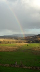 Alas no pot of gold (Pjposullivan1) Tags: gartmorehouse gartmore rainbow woodland stirlingshire scottishhighlands