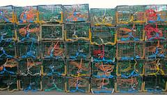 Beaucoup de cages / Lots of traps (4-4) (deplour) Tags: cages pêche quai pugwash nouvelleécosse fishing traps wharf novascotia cordes ties ropes empilés stacked rangés rows