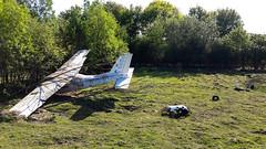 Bad day ! ... (Keinsei2) Tags: plane avion crash kangourou animal decorative decor parc des oiseaux villarslesdombes ain dombes samsung xa1 france bush australien