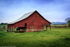 Red Barn (NormFox) Tags: archetiture barn buliding california farm field grass horse jamestown landscape outdoors ranch sky tuolume