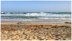 A beach far away (Adobe Garamond) Tags: beach secluded far away sand sea ocean waves sunny day holidau sun warm hot naturism alone landscape horizont line sky blue clean