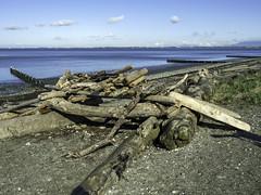 Log cabin (Tony Tomlin) Tags: crescentbeach bc logs driftwood beach