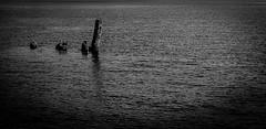 Ancoradouro para sonhos não realizados (jadc01) Tags: abstract d3200 detail harbour mar nikon nikon1855mm port porto riodejaneiro seascape water blackandwhite blackwhite