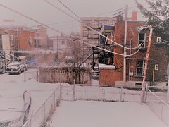 April Fool's Snow (navejo) Tags: montreal quebec canada snowing again aprilfool
