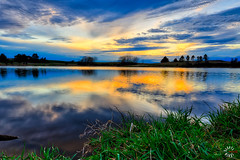 L59A5020_HDR_edit.jpg (kendra kpk) Tags: trippcounty gregorycounty spring burkelake burke dakotawindsphotocom dakotawindsphotography beaulieaudam birds 2017 us southdakota winner water wildlife