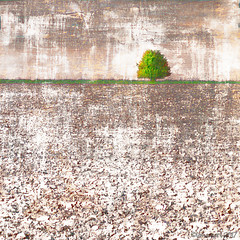 The Lonely Tree (Lemon~art) Tags: solitary alone one tree field countryside ploughed spring texture manipulation