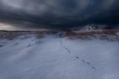 Footprints in the snow (Alec_Hickman) Tags: landscape beach dawn dark snow ice winter freeze frozen canada house light clouds dramatic sky leadingline cottage newbrunswick atlantic maritimes