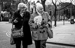2017_101 (Chilanga Cement) Tags: fuji fujix100t fujix100f x100t xseries x100f x x100 x100s bw blackandwhite monochrome ladies women look looking road southport bag bags coat coats