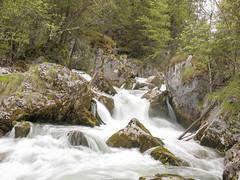 P5010109 (turbok) Tags: bach grimmingbach landschaft wasser wasserfall c kurt krimberger