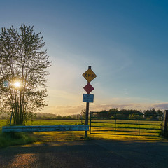 Departure (rosenunezsmith) Tags: lanecounty goldenhour builtlandscape sunset roadsigns gates rural suburbanlandscape oregon tree photos5lexar magichour endofroadsign regionaldistinctions eugene pacificnorthwest america asphalt field pnw upperleftusa end fields roadends trees