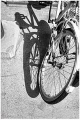 Rueda (patosincharco) Tags: bicicleta rueda