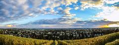 panorama_wiesbaden (Marcel Huth) Tags: deutschland germany wiesbaden hessen panorama sonnenuntergang himmel wolken weinberg sky herbst autumn stadt city