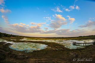 Crews Lake Park - fisheye view. April 2016