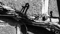 Grape (Theo Bauhuis) Tags: druif grape monochrome zwartwit muur baksteen detail oud