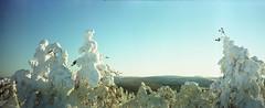 Ruuhitunturi (ntrsrkl) Tags: kodak portra 6x17 wide finland sallainthemiddleofsnowhere winter snow wollensak homemade