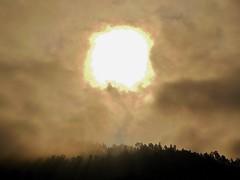 NEPAL, Auf dem Weg nach Pokhara, misty, 16020/8280 (roba66) Tags: sun sonne mist nebel reisen travel explore voyages roba66 visit urlaub nepal asien asia südasien pokhara landschaft landscape paisaje nature natur naturalezza silhouette