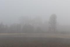 8X8A9407 (tatianahelin) Tags: spring fog countryside