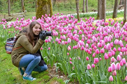 Fotografando tulipani
