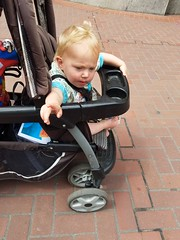 J'accuse! (quinn.anya) Tags: paul toddler angry pointing annoyed stroller marchforscience