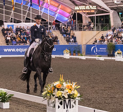 17429_Sydney_CDI_GPFS_0154.jpg (FranzVenhaus) Tags: athletes dressage australia equestrian riders horses ponies rug siec nsw sydney newsouthwales aus