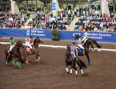 17429_Sydney_CDI_Quadrilles_0023.jpg (FranzVenhaus) Tags: athletes dressage australia equestrian riders horses ponies rug siec nsw sydney newsouthwales aus