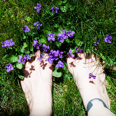 Tiptoe Through The...Violets? (Jules (Instagram = @photo_vamp)) Tags: photochallenge feet violets flowers grass lawn backyard spring barefoot chickwithink