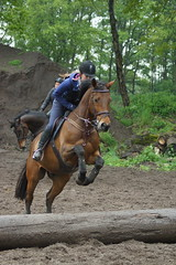 DSC01320 (Schep_B) Tags: de manege davidoff crosstraining schalm paardensport