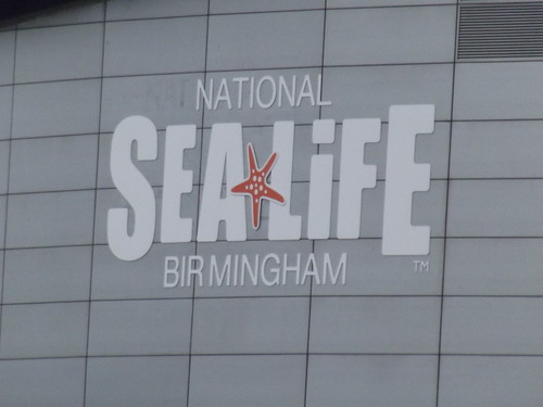 National Sea Life Centre