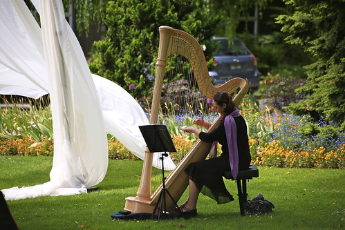 Harping at a wedding