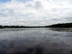 Parvin Lake (Christine_Ray) Tags: park county new pine state reserve national jersey pinelands salem barrens parvin belleplain belleplaincapemayandparvin capemayandparvin